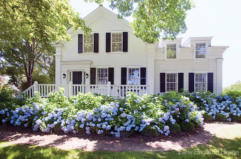 Cape-cod-via-made-in-heaven-white-house-and-blue-hydrangea