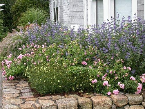 Gardens by rebecca 4